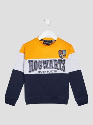 Sweat Harry Potter multicolore garcon
