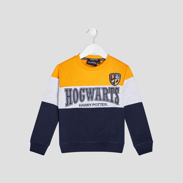 Sweat Harry Potter garçon multicolore