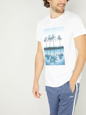 T shirt coton imprime palmiers blanc homme