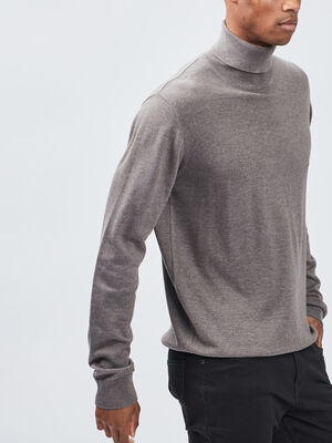 Pull avec col roule taupe homme