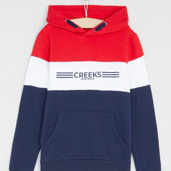 Sweatshirt à capuche bandes tricolores garçon bleu marine