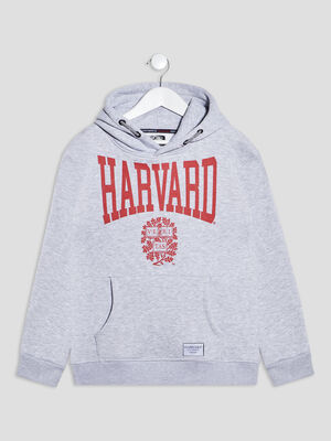 Sweat a capuche Harvard gris fille