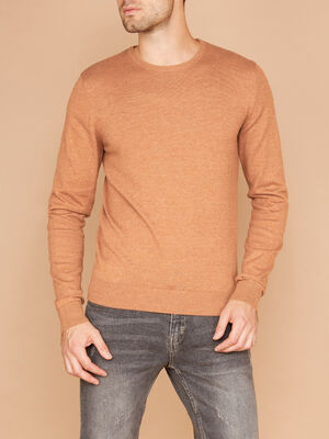 Pull col rond maille unie marron clair homme