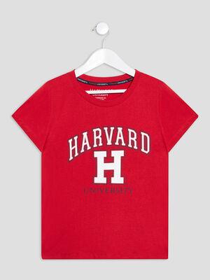 T shirt Harvard rouge fille
