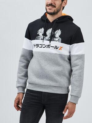 Sweat Dragon Ball Z multicolore homme