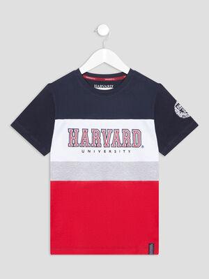 T shirt Harvard multicolore garcon