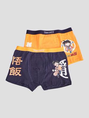 Lot 2 boxers Dragon Ball Z multicolore garcon