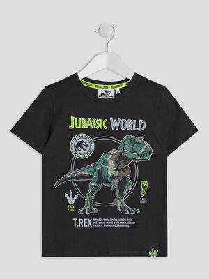 T shirt Jurassic World gris garcon