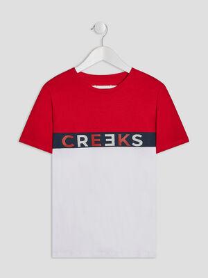 T shirt tricolore avec logo rouge garcon