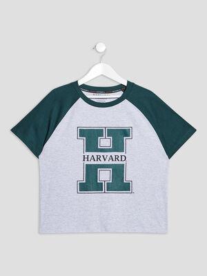 T shirt Harvard multicolore fille
