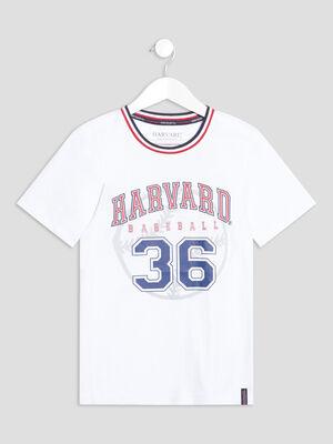 T shirt Harvard blanc garcon