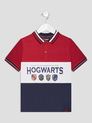 Polo Harry Potter multicolore garcon