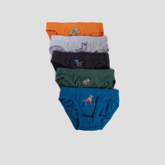 Lot 5 culottes garçon multicolore