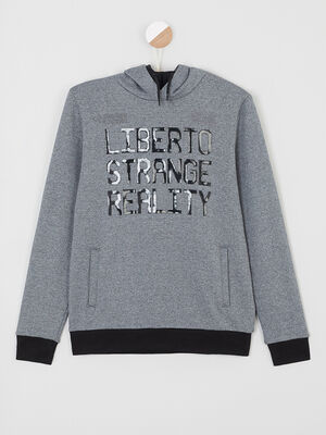 Sweatshirt capuche bleu gris garcon
